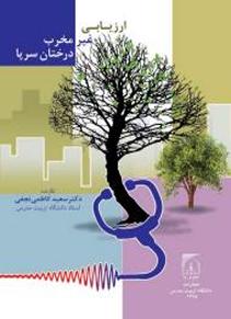 ارزیابی غیر مخرب درختان سرپا