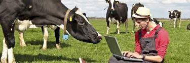 کشاورزی -علوم دامی